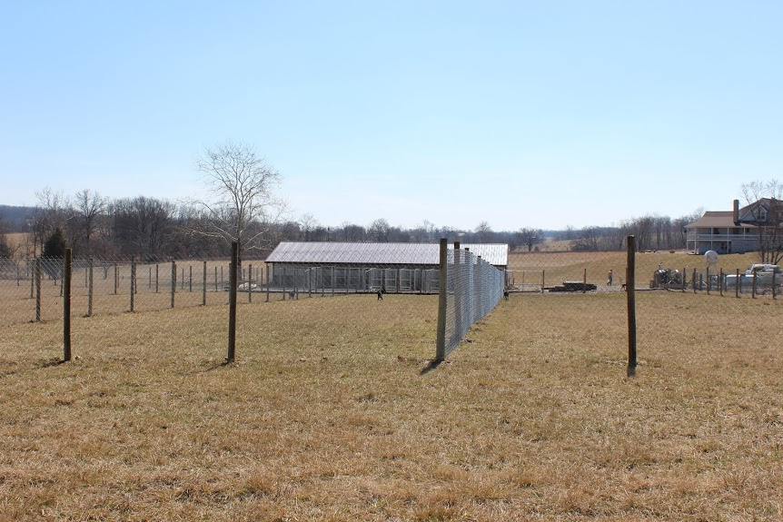 Picture of the large play yards at Sweet Pea Kennels. When using our boarding or daycare services your dog will play in these fields.